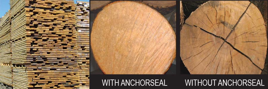 Anchorseal